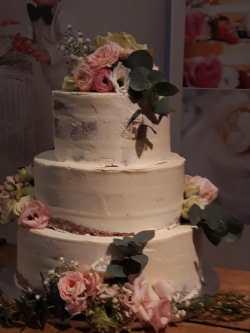 Half_nacht_torte