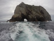 Hole in the Rock beim Bay of Islands