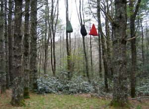 Bear bags hanging