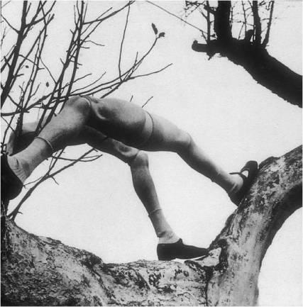 image-7-hans-bellmer-les-jeux-de-la-poupee