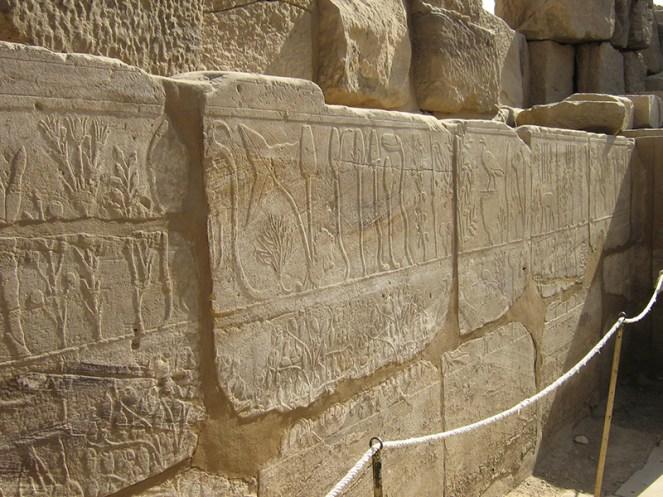 10 Egypt 08 086