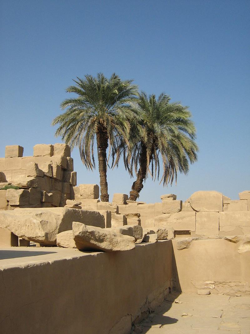 10 Egypt 08 088