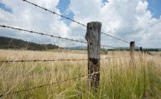 12677404-farm-fence-stock-photo