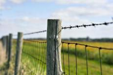 barbed-fence-resized