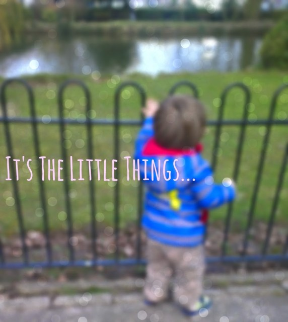 Feeding the ducks #itsthelittlethings http://lukeosaurusandme.blogspot.co.uk/2015/03/its-little-things.html