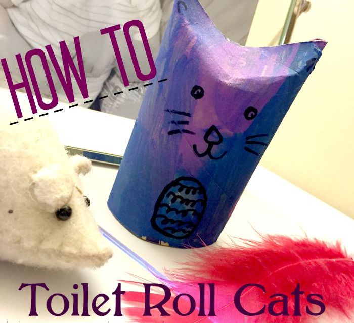 How To: Toilet Roll Cats