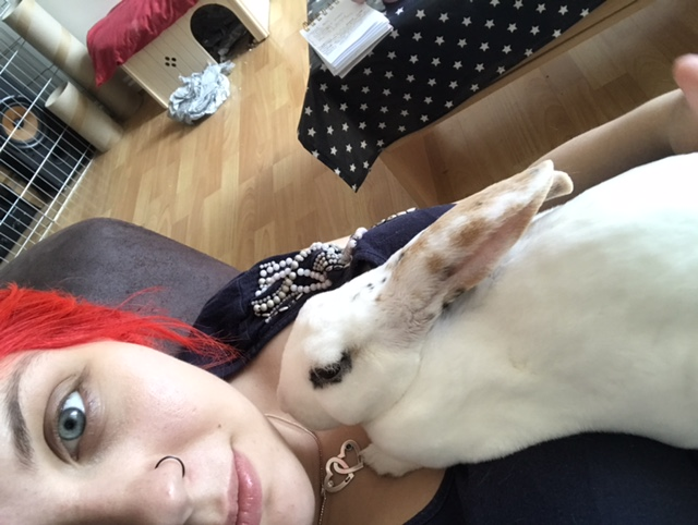 About Huxley the house rabbit at https://lukeosaurusandme.co.uk