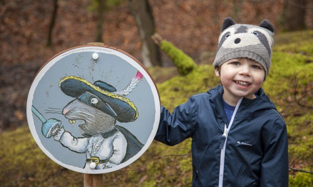 Days Out: Hunting For The Highway Rat at Alice Holt, Farnham