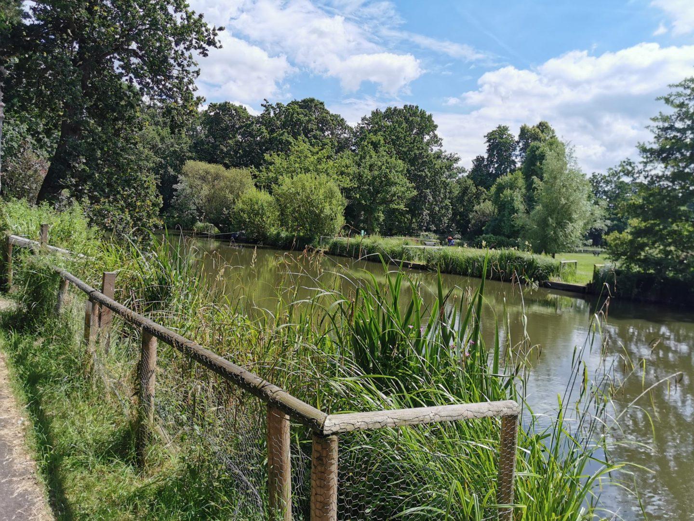 view of aldershot park and fishing lake