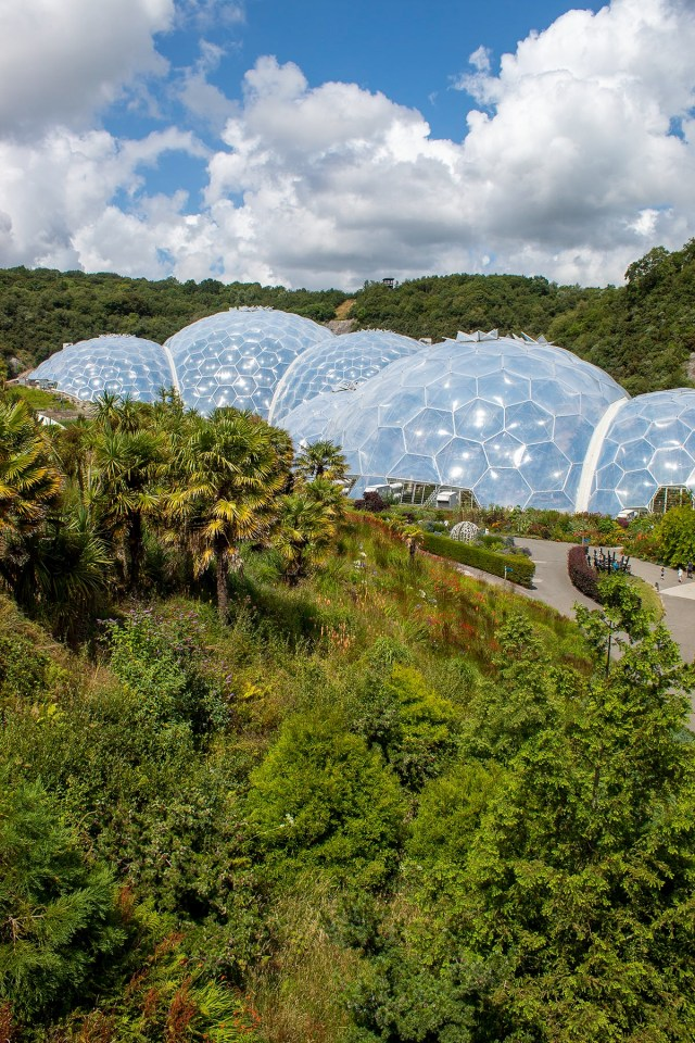 View of The Eden Projects rainforest biome and outdoor gardens.