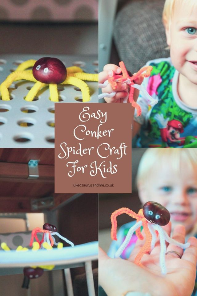Easy conker spider craft for kids in the middle with several images of conkers that have been made into spiders with pipe cleaners.