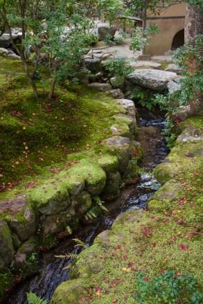 Landscaped stream, Isuien Garden, Nara Park