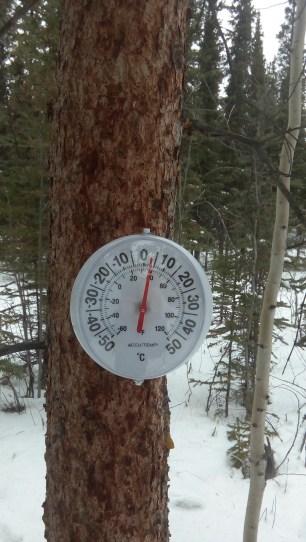 Das Thermometer am Baum weist 3 Grad aus. Schnee gibt es trotzdem noch genug.