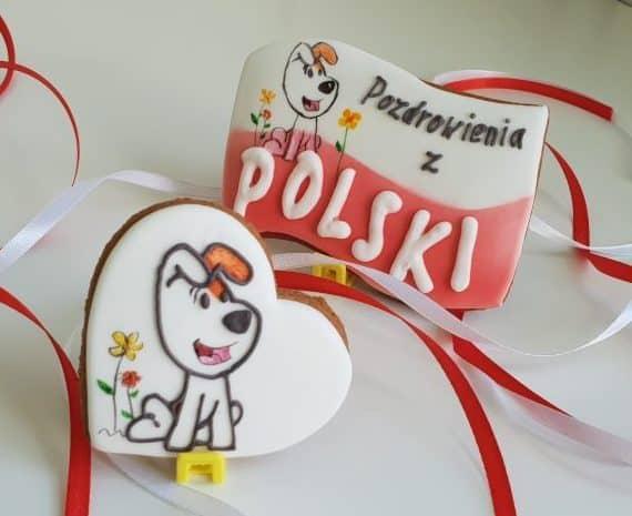 lukrowane ciasteczka na zamówienie, pierniczki Reksio - Basia sweets