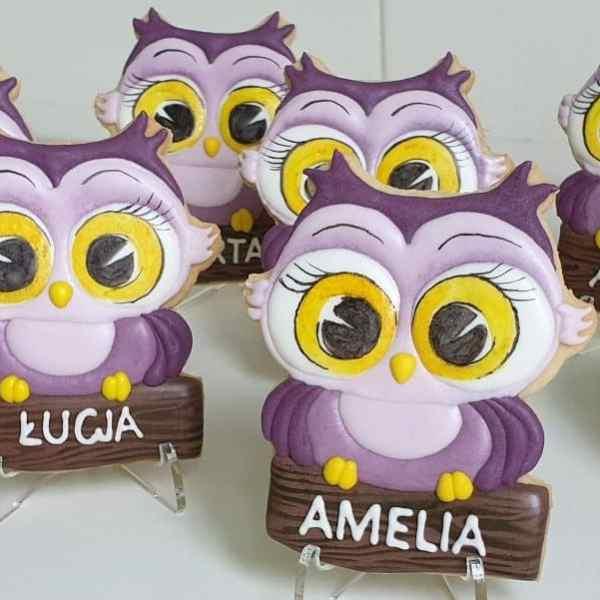 Lukrowane ciasteczka dla dziewczynek, Pierniczki na Dzień Kobiet, upominki dla dzieci Basia sweets