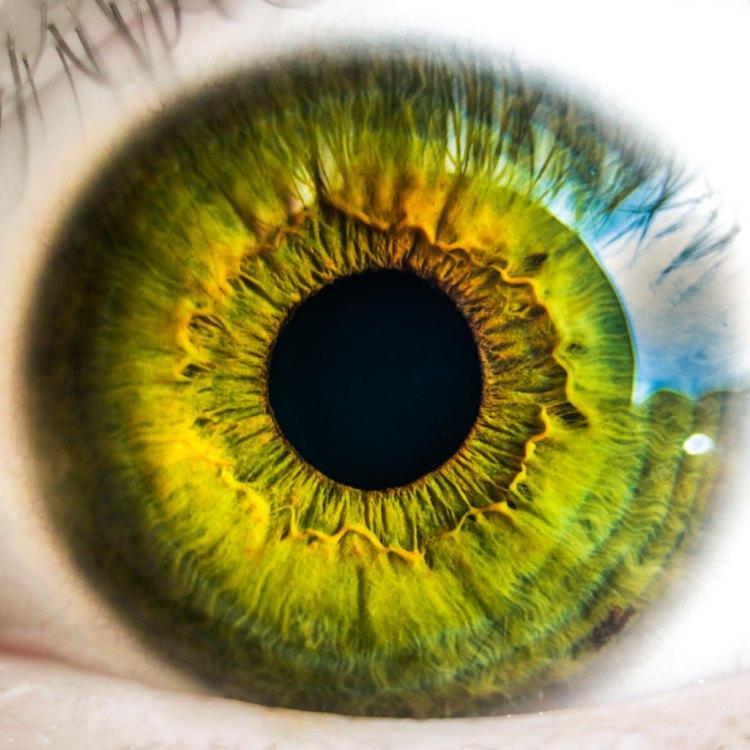 salud-ojo-federopticoslukus-destacada