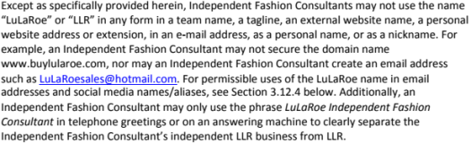 "LuLaRoe Retailer is now a ""mean boy"""