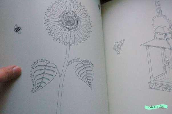 Book Review Secret Garden Coloring Book By Johanna