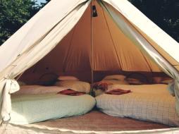 sleep over den