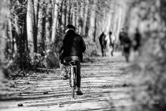 Jorge Costa Carvalho_bicicleta