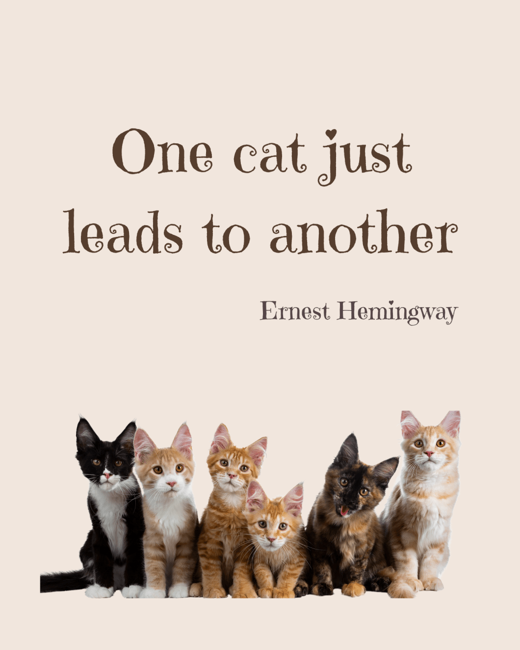 Famous quotes - Ernest Hemingway Cat quote