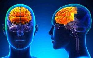 Amnesia and memory loss