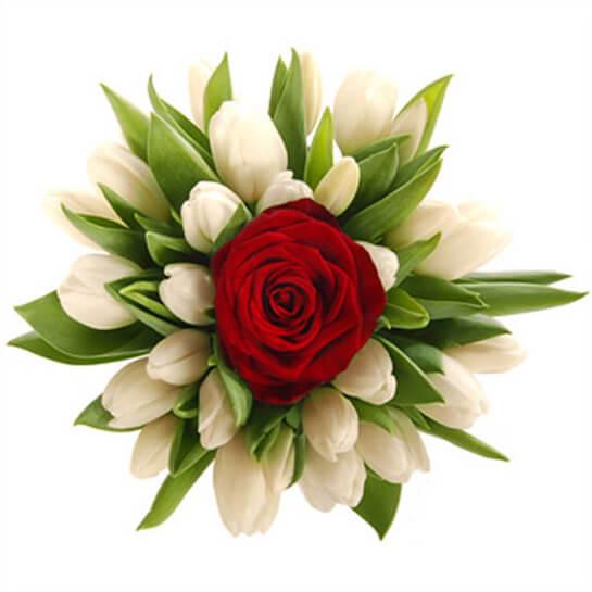 композиция с красной розой