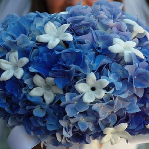 сочетание синего, белого и голубого в букете невесты
