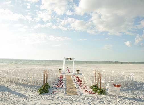 берег океана и красные цветы на пляже
