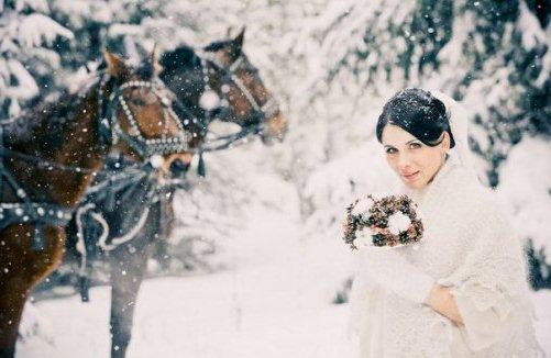 кони на зимней свадьбе