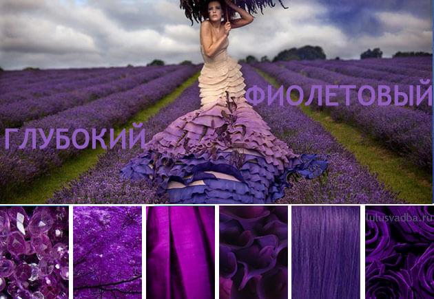 фиолетовай цвет в свадбы