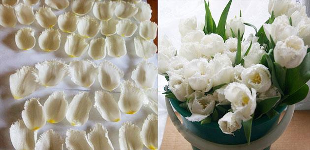 Букет шар на свадьбу из тюльпана своими руками