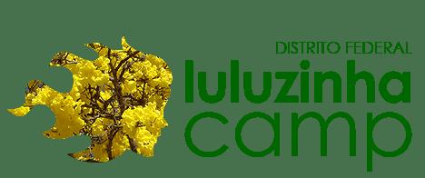 Ipês amarelos para o LuluzinhaCamp-Bsb.