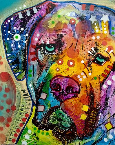 cachorro colorido - imagem See-ming Lee SML no flickr