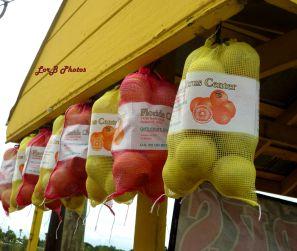 Hanging Fruits