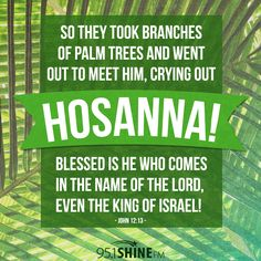 Scripture Sunday: Palm Sunday