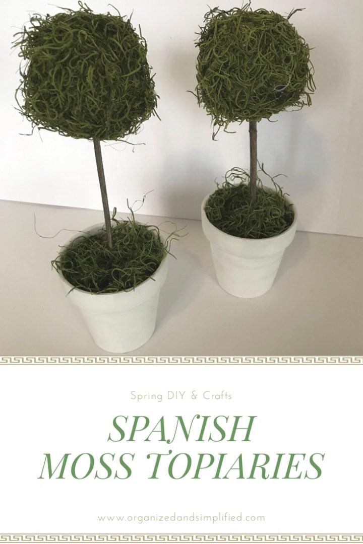 Make something Monday: Spanish moss topiaries