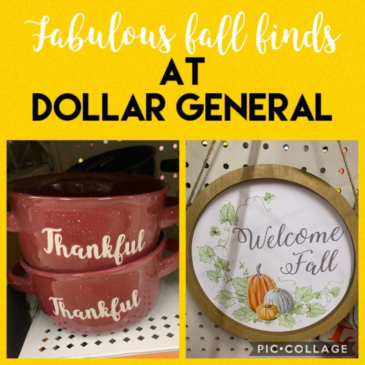 Fabulous Fall Finds at Dollar General
