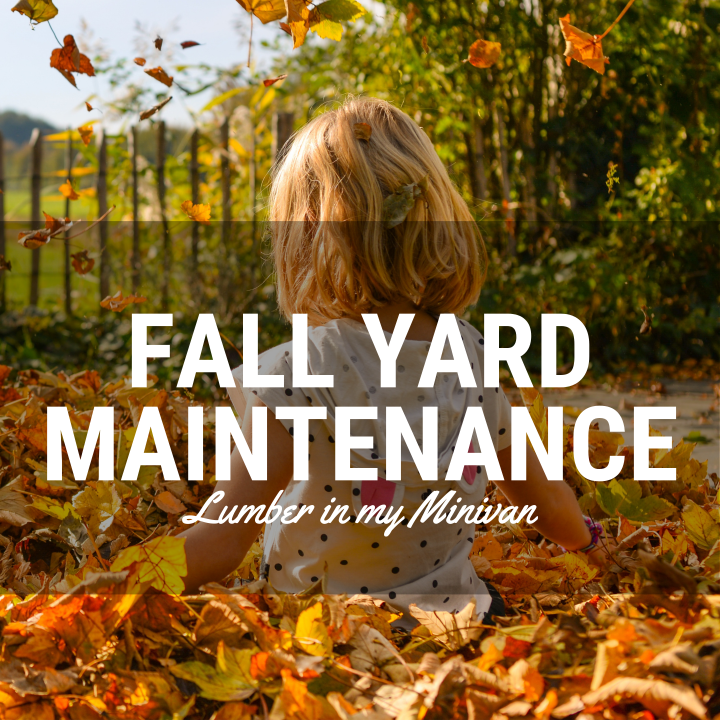 Fall Yard Maintenance with Lumber in My Minivan