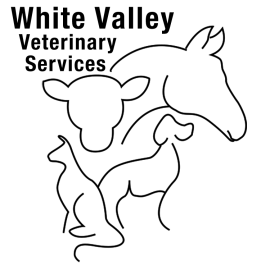 White Valley Vet Hospital Lumby BC