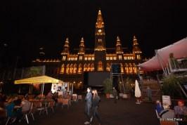 Viena, festival la primarie