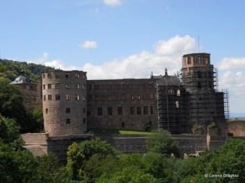 Castelul vazut din gradina