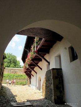 Manastirea Govora IMG_0037
