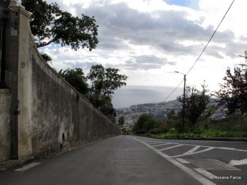Madeira_1843