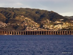 Madeira_2415