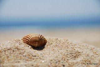 Algarve 07