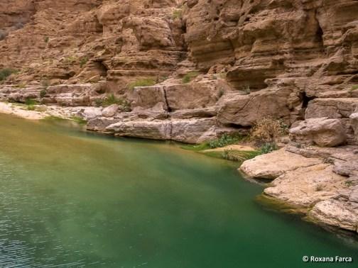 Oman_8518
