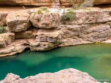 Oman_8533