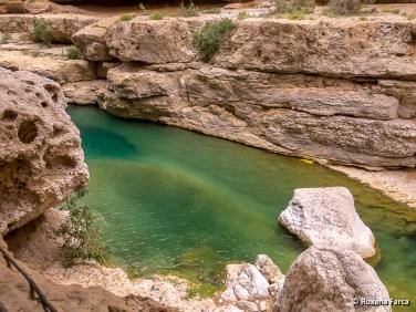 Oman_8540
