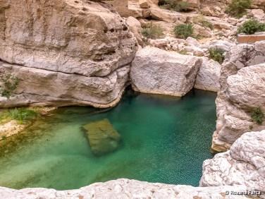 Oman_8542